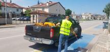 İzmit Belediyesi sivrisineklere karşı ilaçlamayı aksatmıyor