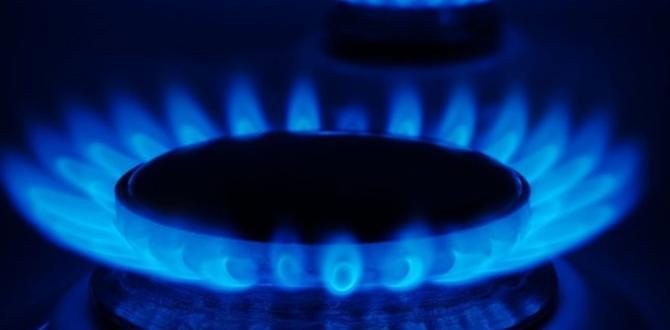 405 Milyar metreküp doğalgaz 2023 yılında ekonomiye kazandırılacak