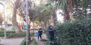 3 ilçede ağaçlara kış bakımı