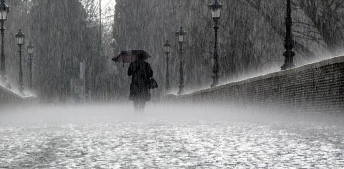 Sağanak yağış uyarısı devam ediyor