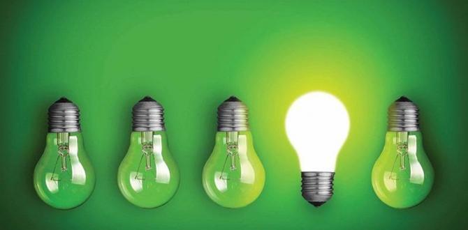 Yeşil Mutabakat Eylem Planı Yayımlandı